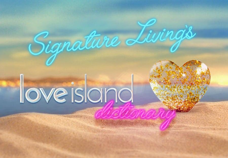 Love Island Dictionary