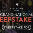 Download Your Grand National Sweepstake Kit